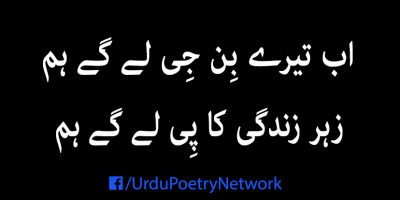 ab tere bin jee lengy hum poetry